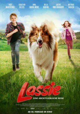 Film Wolf und Lassie